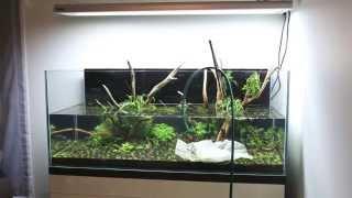 Download Zakładanie akwarium 120x50x50cm - 300L - Timelapse Video