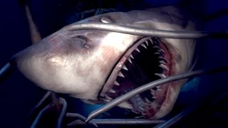 Download SHARK ATTACK!! Playstation VR Worlds Gameplay HD Video