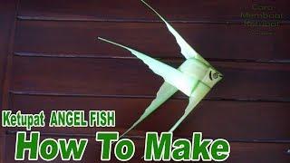Download Cara Membuat Ketupat Ikan Angel Fish dari Daun Kelapa Video