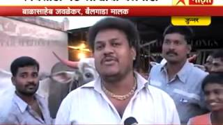 Download Rajushet Jawlekar Bailgada(Vafgaon) Video
