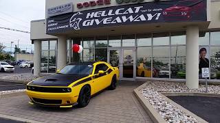 Download 2017 YELLOW JACKET T/A CHALLENGER Video