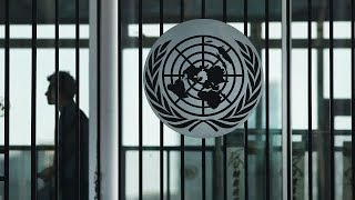 Download Report: Third of UN staff sexually harassed Video