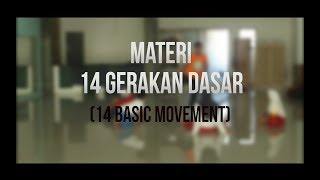 Download 14 GERAKAN DASAR (14 BASIC MOVEMENT) TAEKWONDO Video