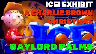 Download ICE! exhibit ″A Charlie Brown Christmas″ highlights at Gaylord Palms Resort Video