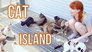 Download CAT ISLAND in Japan! 猫島 (宮城県) Tashirojima Video