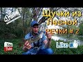 Download Щучки из лесной речки #2 Video