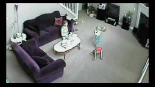 Download Cat Saves Child From Mom Video