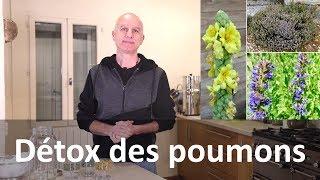 Download Détox des poumons avec les plantes : cigarette et pollution Video