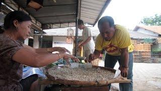 Download BIRD MARKET : Ibu Sugeng, 20 Tahun Dagang Kroto Di Pasar Burung Purwokerto Video