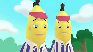 Download Animated Compilation #19 - Full Episodes - Bananas in Pyjamas Official Video