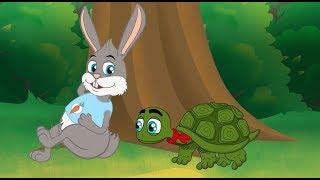 Download A Lebre e a Tartaruga (O Coelho e a Tartaruga) Historia Completa | Desenho animado infantil Video