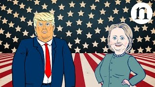 Download Scientists' guide to the US election Video