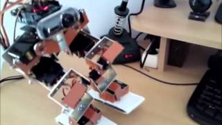 Download Biped robot Speed contol Video