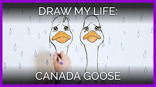 Download Draw My Life: Canada Goose Edition, Featuring Sarah Jeffery Video