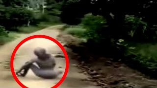Download 20 Scariest Creatures Caught on Tape Video