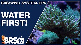 Download Ep6 - A simple & stable reef tank starts with water! - The BRS/WWC System | BRStv Video