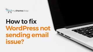 Download How to fix WordPress not sending emails issue? Video