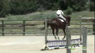 Download How to Become an Olympic Equestrian Jumping Athlete Video