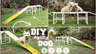 Download How To: DIY Agility Dog Walk | TheDogBlog Video