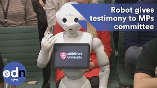 Download Robot gives testimony to MPs committee in UK first Video