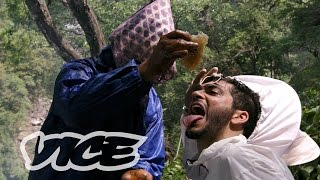 Download The Nepalese Honey That Makes People Hallucinate Video