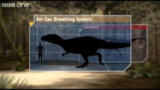Download Breathing Techniques - Planet Dinosaur - Episode 1 - BBC One Video