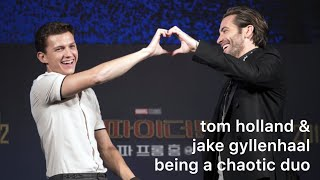 Download more of tom holland & jake gyllenhaal being a chaotic duo Video