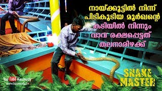 Download OMG! Vava Suresh marginally escapes from a Cobra   Snakemaster   Latest Episode Video