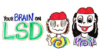 Download Your Brain on LSD and Acid Video