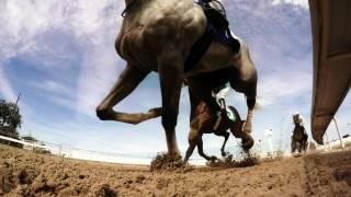 Download Let it Ride Video