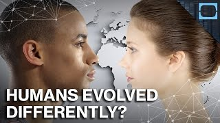 Download Why Europeans And Asians Evolved So Differently Video