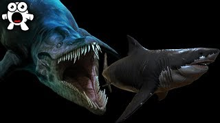 Download Creatures More Terrifying Than Megalodon Living In the Mariana Trench Video