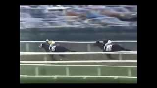 Download Secretariat's Progeny Win the Belmont Stakes Video