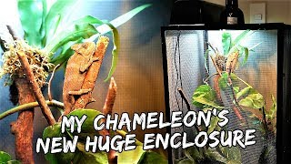 Download My Chameleon's New Epic, Modified Enclosure   Vlog #409 Video