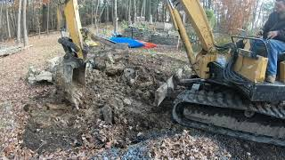 Download Digging a Oak stump out of rocky ground Video
