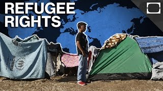 Download What Rights Do Refugees Have? Video