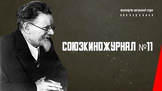 Download Союзкиножурнал № 11: Наступательные бои Красной Армии на Украине (1943) документальный фильм Video