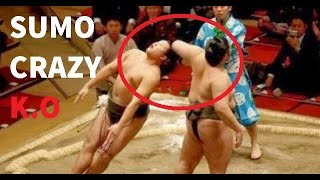 Download Sumo Wrestling Brutal And Best Knockouts Compilation Video