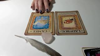 Download 💗 What is my future partner like? LOVE PICK A CARD READING 💗 Video