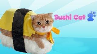 Download Sushi Cat 2 Video