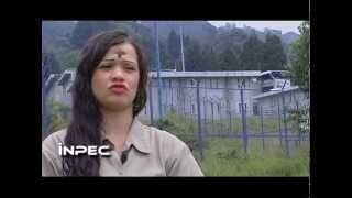 Download Reportajes de Libertad (Marzo 30 de 2014) Video