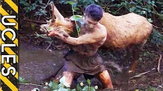 Download Wild Animals Caught Barehanded Video