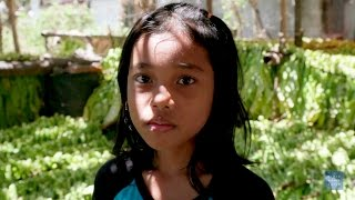 Download Hazardous Child Labor on Indonesian Tobacco Farms Video