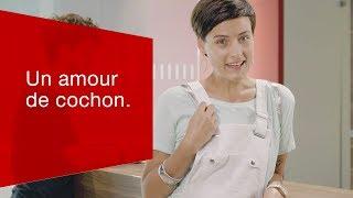 Download Un amour de cochon. Video