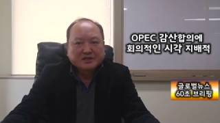 Download [글로벌뉴스 60초브리핑] OPEC 감산합의에 회의적인 시각 지배적 Video