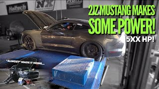 Download Pt.8 | 2JZ Mustang hits the DYNO! Video