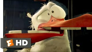 Download Storks (2016) - Birds Can't See Glass Scene (7/10) | Movieclips Video