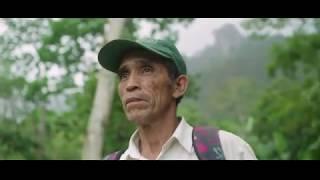 Download Juntos por Nicaragua: De vivir en casa a cuidar del hogar Video