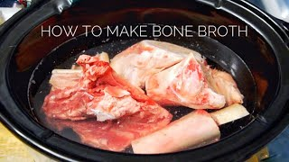 Download How to Make Bone Broth for Your Dog || DIY Supplements Video