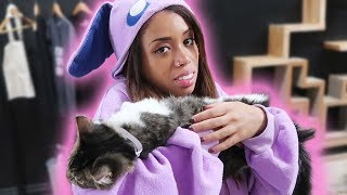 Download BOZE BECOMES ONE WITH THE CATS! Video